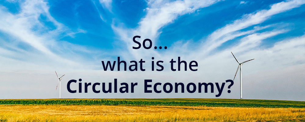 So, What in the World is the Circular Economy?