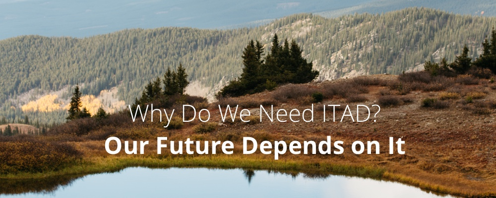 Why Do We Need ITAD? Our Future Depends on It